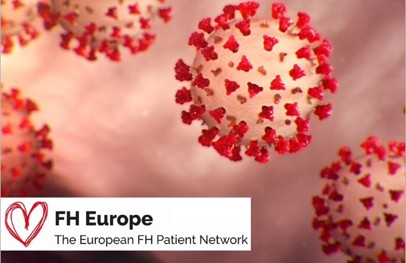 Support for the FH Europe Network in COVID19 crisis